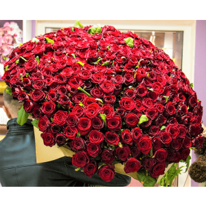 Enchanted Love(1000 Red Roses)