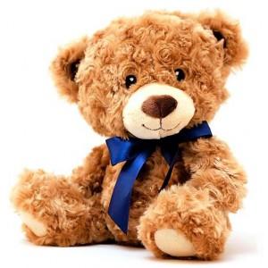 Cute Brown Teddy Bear